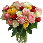 Order flowers to Poland: 20 Colorful Roses