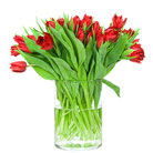 Order flowers to Poland: 20 Tulips Bouquet