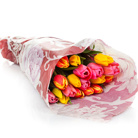 Order flowers to Poland: 20 Colorful Tulips Bouquet