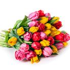 Zamów kwiaty do Polski: Bukiet 30 Tulipanów