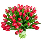 Order flowers to Poland: 50 Tulips Bouquet