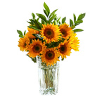 Order flowers to Poland: Sunflowers Bouquet (medium)