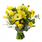 Order flowers to Poland: Spring Bouquet